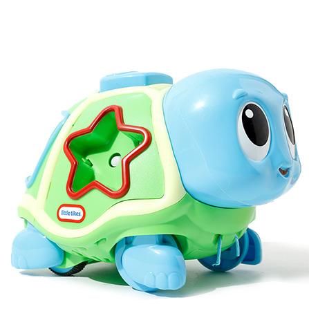 萌动欢乐小海龟 花